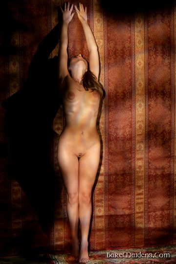 Baremaidens Trisvana Emerging From The Shadows