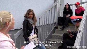 Couple Doing A Survey