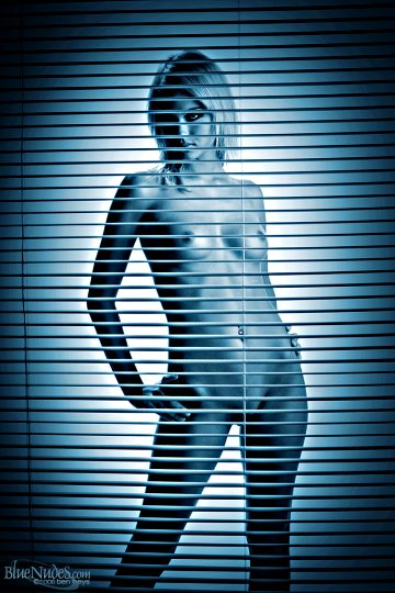 Courtney Blue Blinds