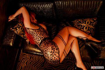 Leopard-fox – Bianca Beauchamp 2016