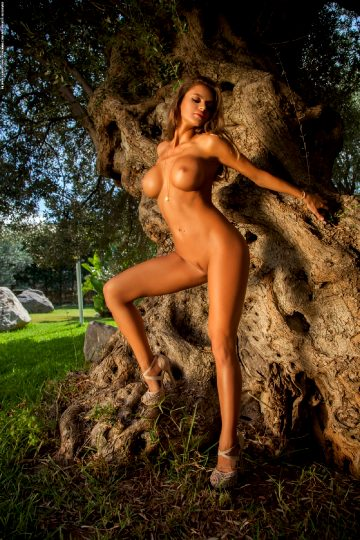 Photodromm Dana – The Tree Of Beauty