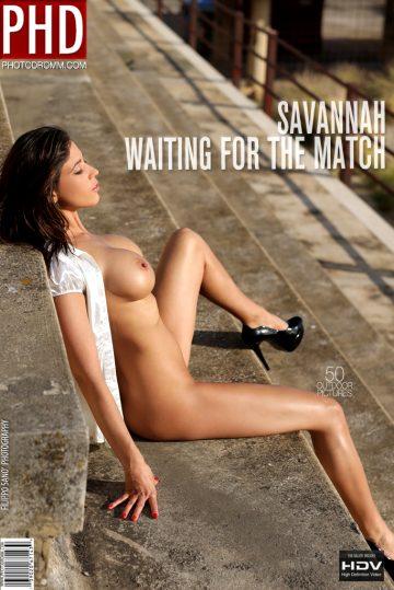 Photodromm Savannah Waiting For The Match