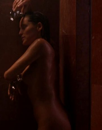 Sharon Stone Shower Plot-The Specialist